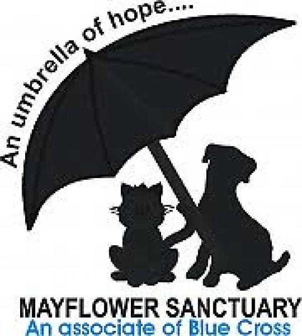 Charity Donation Mayflower Sanctuary