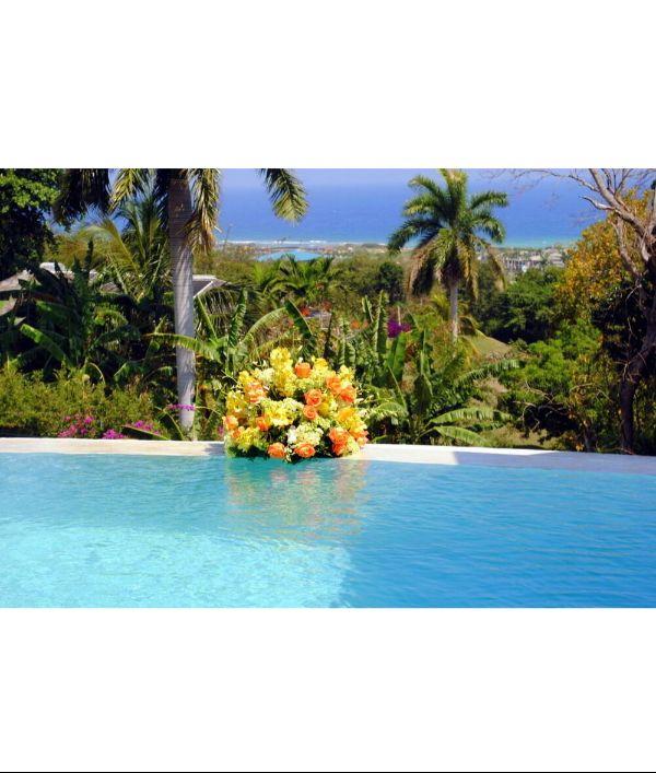 luxury-caribbean-villa-104304.png