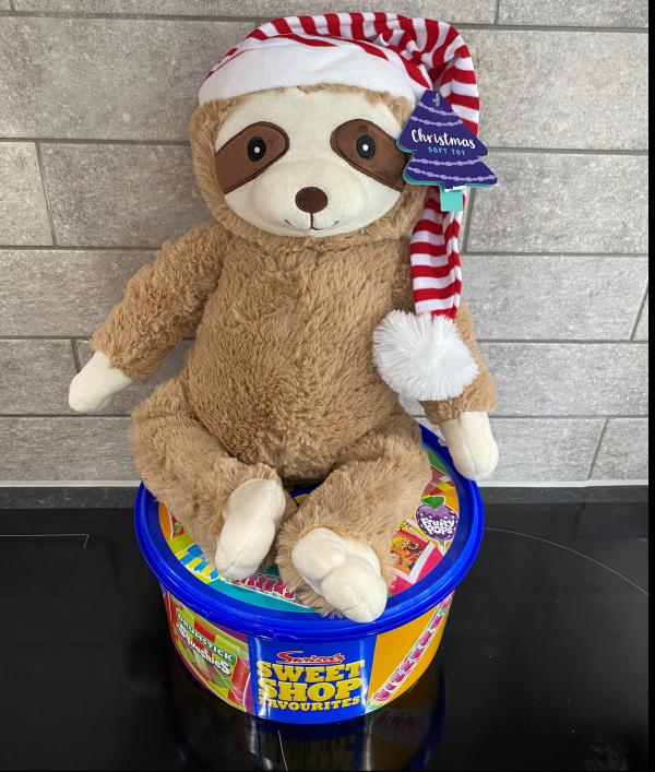 teddy-raffle-75792.png