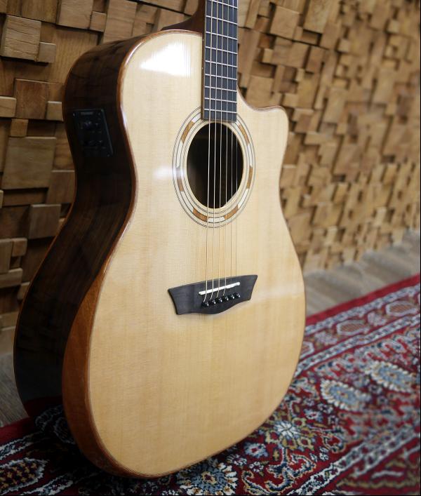 washburn-wcg20sce-guitar-95034.png