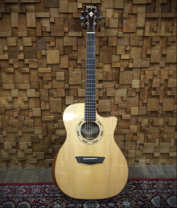 washburn-wcg20sce-guitar-95035.png