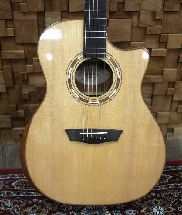 washburn-wcg20sce-guitar-95038.png