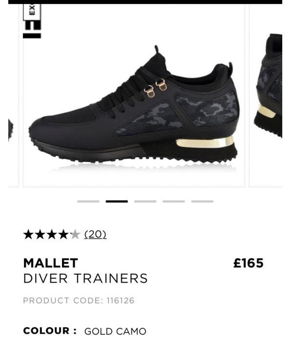 mallet-trainers-101819.png